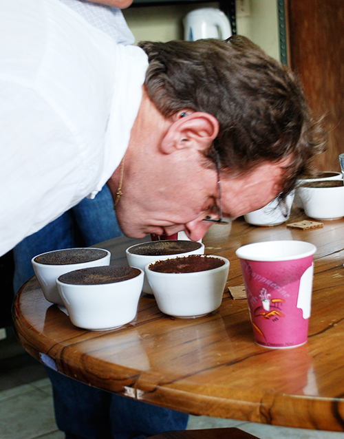 Roast Profiling and Cupping
