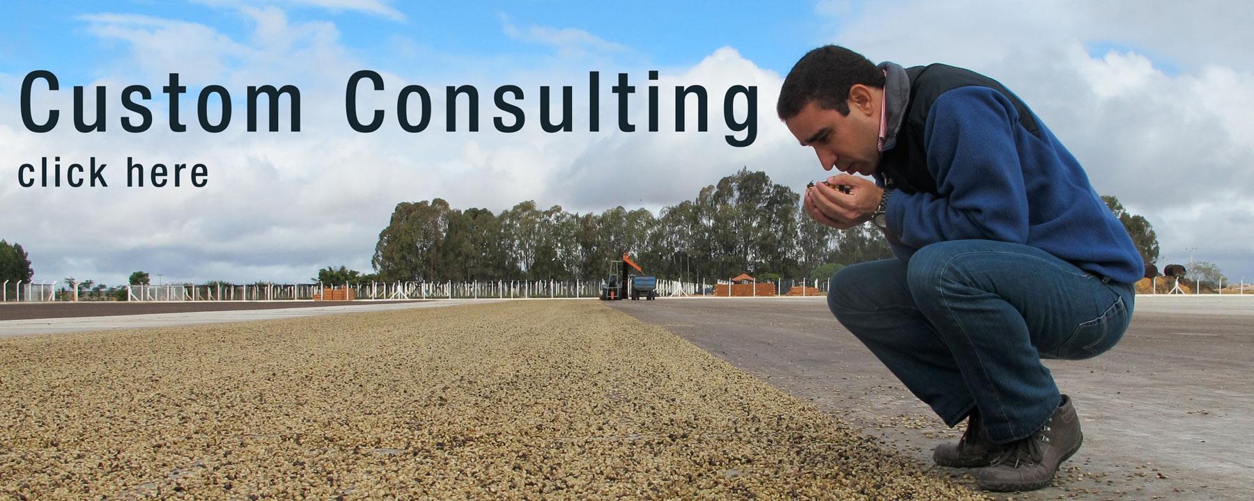 custom_consulting