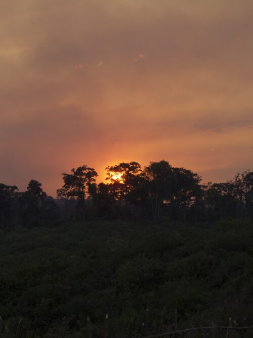sunset above forest western ethiopia