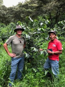 Willem with staff standing around a coffee tree.